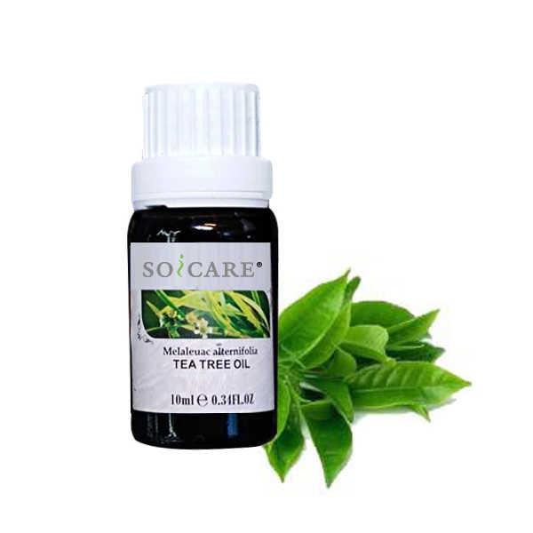 SOICARE 100% Minyak pati penting minyak aromaterapi gred terapeutik untuk penyebar
